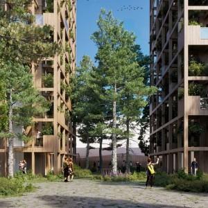 Projet Wood Wood