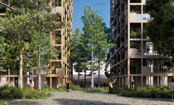 Project Wood Wood
